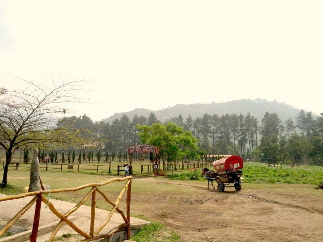 De Ranch View