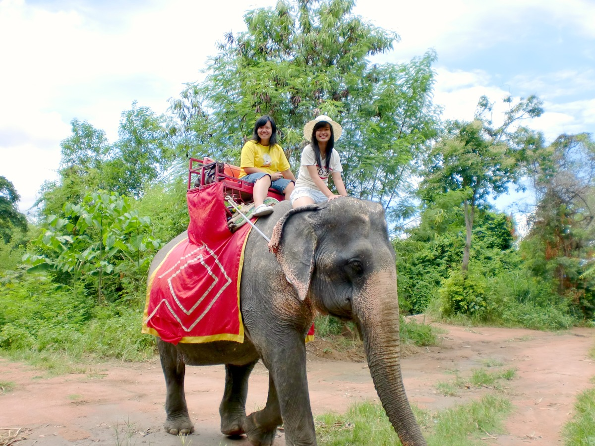 Elephant Trekking Adventure At Pattaya Thailand Sharon Loh
