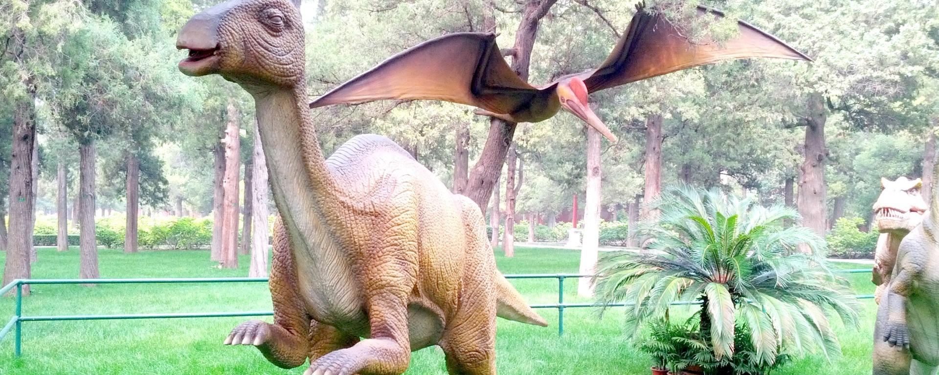 Dinosaurs Beijing