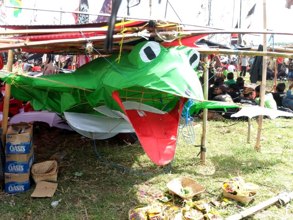 Frog Kite at Bali Kite Festival