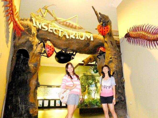 Museum Satwa Insectarium