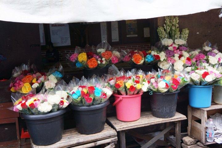 Bunga Lembang