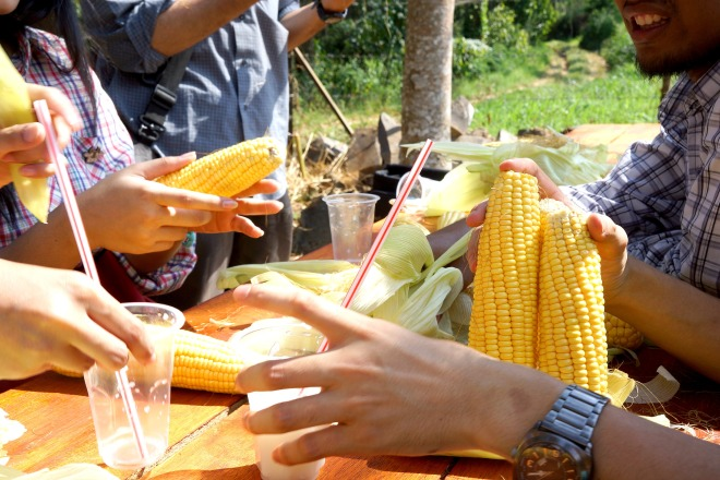 Event by Agritektur
