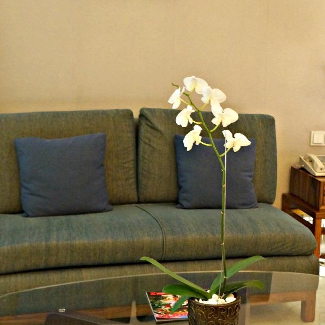 Hilton Bandung Room