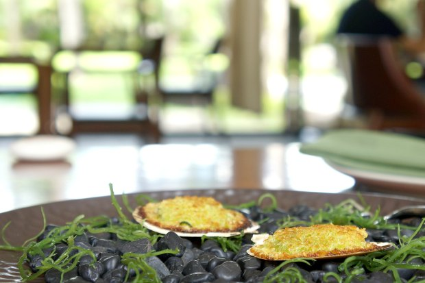 Tapas Restaurant Bali