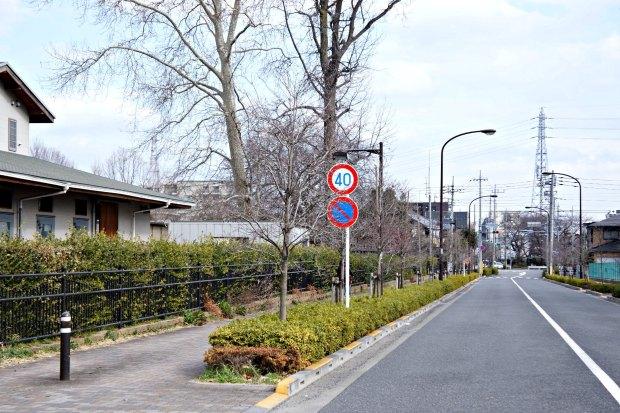 Empty Road Japan
