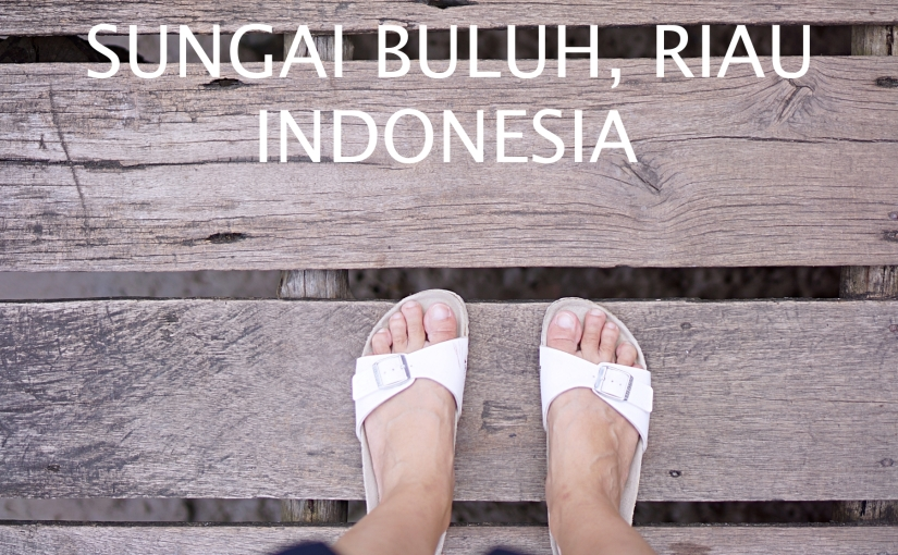 Living in a Water World – Sungai Buluh, Riau, Indonesia
